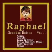 Grandes Éxitos de Raphael, Vol. 1 by Raphael
