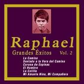 Grandes Éxitos de Raphael, Vol. 2 by Raphael