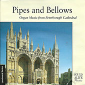 Pipes and Bellows von Various Artists