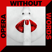 Opera Without Words: 50 Instrumental Versions of Arias & Overtures with Mozart, Puccini, Verdi & More by Various Artists
