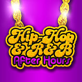 Hip Hop & R&B After Hours by Various Artists