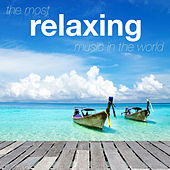 The Most Relaxing Music in the World by Various Artists