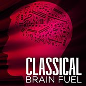 Classical Brain Fuel by Various Artists
