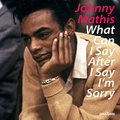 What Can I Say After I Say I'm Sorry by Johnny Mathis