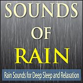 Sounds of Rain: Rain Sounds for Deep Sleep and Relaxation by Robbins Island Music Group