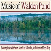 Music of Walden Pond: Soothing Music With Nature Sounds for Relaxation, Meditation, And Deep Sleep by Robbins Island Music Group