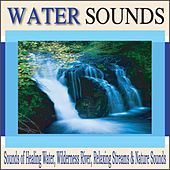 Water Sounds: Sounds of Healing Water, Wilderness River, Relaxing Streams & Nature Sounds by Robbins Island Music Group