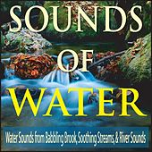 Sound of Water: Water Sounds from Babbling Brook, Soothing Streams, & River Sounds by Robbins Island Music Group