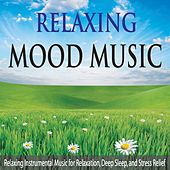 Relaxing Mood Music: Relaxing Instrumental Music for Relaxation, Deep Sleep, And Stress Relief by Robbins Island Music Group