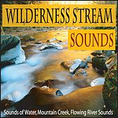 Wilderness Stream Sounds: Sounds of Water, Mountain Creek, Flowing River Sounds by Robbins Island Music Group