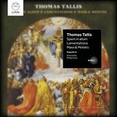 Tallis: Spem in alium Taster (EP) by Magnificat