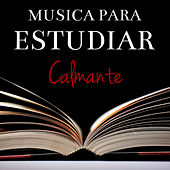 Musica Para Estudiar Calmante by Various Artists