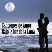 Canciones de Amor Bajo la Luz de la Luna by Various Artists