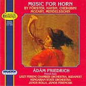 Forster / Haydn / Cherubini / Mozart / Mendelssohn: Works for Horn by Various Artists