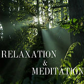 Relaxation and Meditation by Various Artists