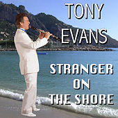 Stranger on the Shore by Tony Evans