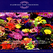 Flowers For Friends - The Power Of Flowers 10 by David & The High Spirit