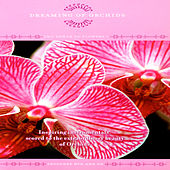 Dreaming Of Orchids - The Power Of Flowers 1 by David & The High Spirit