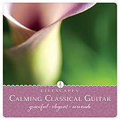 Calming Classical Guitar by Dirk Freymuth