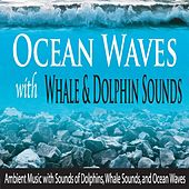 Ocean Waves With Whale & Dolphin Sounds: Ambient Music With Sounds of Dolphins, Whale Sounds, And Ocean Waves by Robbins Island Music Group
