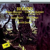 Brahms: Piano Quintet in F Minor / Clarinet Quintet in B Minor by Various Artists
