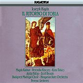 Haydn: Ritorno Di Tobia (Il) (The Return of Tobias) by Zsolt Bende