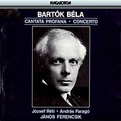 Bartok: Cantata Profana / Concerto for Orchestra by Various Artists