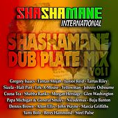 Shashamane Dub Plate Mix, Vol. 1 (Shashamane International Presents) by Various Artists