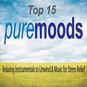 Top 15 Pure Moods: Relaxing Instrumentals to Unwind & Music for Stress Relief by Robbins Island Music Group