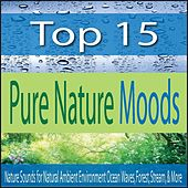 Top 15 Pure Nature Moods: Nature Sounds for Natural Ambient Environment Ocean Waves, Forest, Stream, & More by Robbins Island Music Group