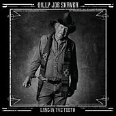 Long in the Tooth by Billy Joe Shaver