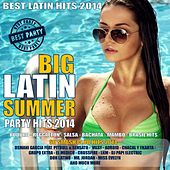 Big Latin Summer Party Hits 2014 - 50 Smash Club Hits (Kuduro, Reggaeton, Bachata, Salsa, Mambo, Brasil Hits) by Various Artists