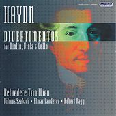 Haydn: Divertimentos Nos. 53, 81, 96, 101, 109, 113, 114 and 117 by Vienna Belvedere Trio