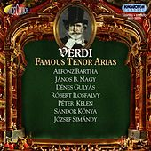 Verdi, G.: Tenor Arias by Various Artists