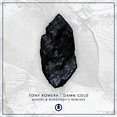 Damn Cold (Remixes) by Tony Romera