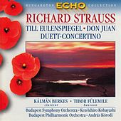 Strauss: Till Eulenspiegel / Don Juan / Duett-Concertino by Various Artists