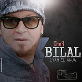 Oky Oky by Cheb Bilal