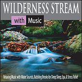 Wilderness Stream With Music: Relaxing Music With Water Sounds, Babbling Brooks for Deep Sleep, Spa, & Stress Relief by Robbins Island Music Group