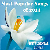 Most Popular Songs of 2014: Instrumental Guitar by The O'Neill Brothers Group