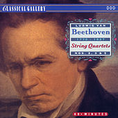 Beethoven: String Quartets Nos. 2, 3 & 5 by Bamberg Quartet