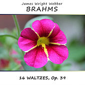 Brahms: 16 Waltzes, Op. 39 by James Wright Webber