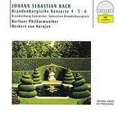 Bach, J.S.: Brandenburg Concertos Nos.4, 5 & 6 by Various Artists