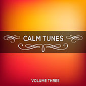 Calm Tunes, Vol. 03 by Various Artists