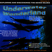 Underwater Wonderland - Vol. 4 by David & The High Spirit