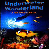 Underwater Wonderland Vol. 1 - A Self Healing Journey by David & The High Spirit