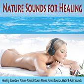 Nature Sounds for Healing: Healing Sounds of Nature Natural Ocean Waves, Forest Sounds, Water & Rain Sounds by Robbins Island Music Group
