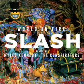 30 Years To Life by Slash