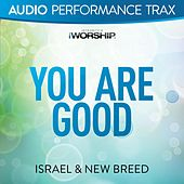 You Are Good (Audio Performance Trax) by Israel & New Breed