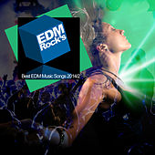 EDM Rock's Best EDM Music Songs 2014/2 by Various Artists