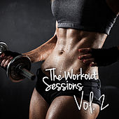 The Workout-Sessions, Vol. 2 by Various Artists